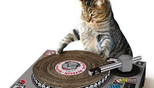 Kratzmatte DJ-Pult