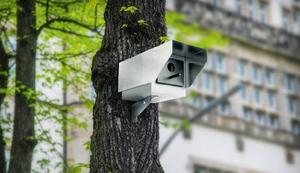 Überwachungs-Nistkasten
