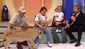 L�we im Fernsehen