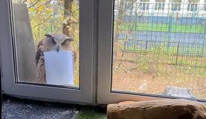 Die Post ist da!