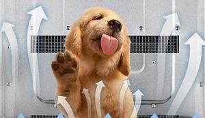 MGWA Hundebett