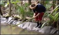 Das Dschungelcamp - Die Wahrheit!