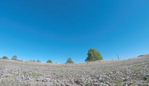 Drohnenpilot attackiert