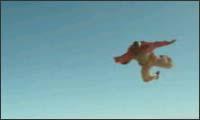 polo - skydiver