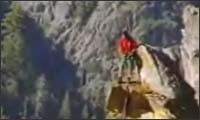 bungee sprung