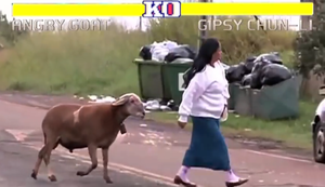 Street Fighter - Angry Goat Edition