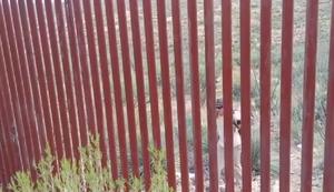 Grenzzaun zu Mexiko