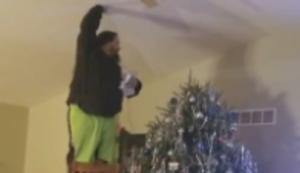 Dem Baum die Spitze aufsetzen