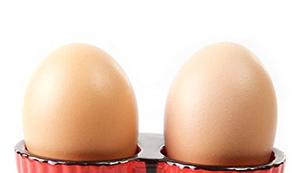 Doppel Eierbecher