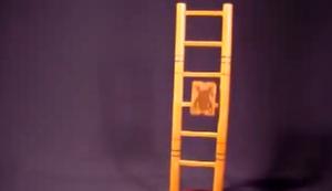 Leitermännchen