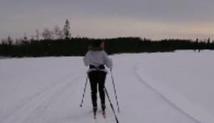 Mit dem Hund im Schnee