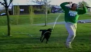 Auf der Flucht vor dem Hund