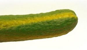 Gurkenfinger