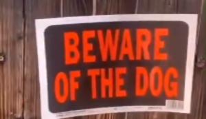 Vorsicht vor dem Hund