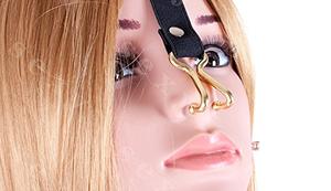 Leder Halsband mit Stahl-Nasen-Haken