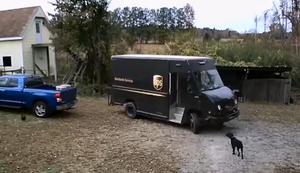 Ein Huhn auf Reisen