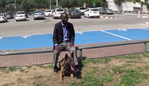 Messerabwehrhund