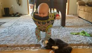 Schönes Katzenspielzeug