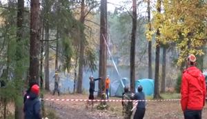 Baum f�llt!