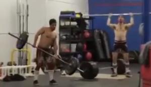 Zwei Tiere beim Training