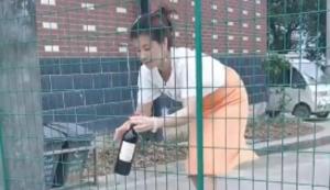 Weinflaschen hinter dem Zaun