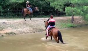 Auf dem Pferd das Wasser überqueren