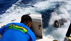 Seel�we besucht Fischer