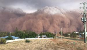 Wenn der Sandsturm anrollt