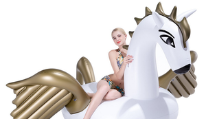 Riesiger aufblasbarer Pegasus