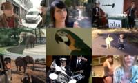 Die beliebtesten Videos 2012 auf eblogx.com