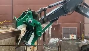 Abriss-Dino