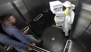 Killerbienen im Aufzug