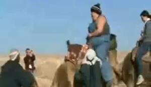 Kamel in die Knie zwingen